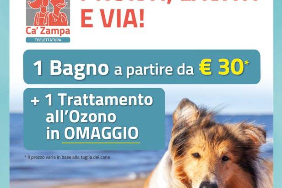 Ca'Zampa – Promo Toelettatura